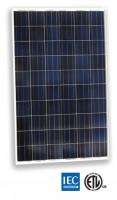 Panel Solar Monocristalino 230x245
